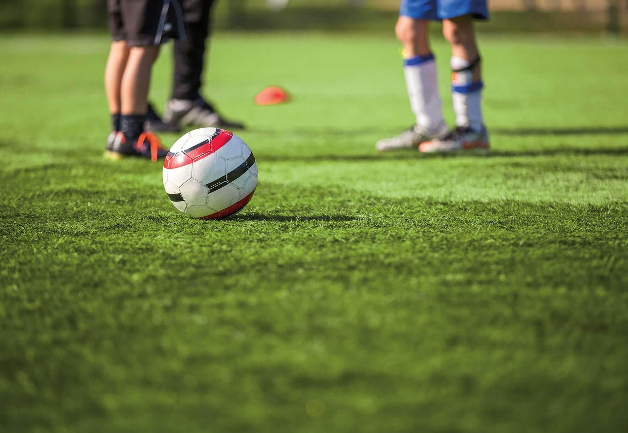 Football Grass pitch