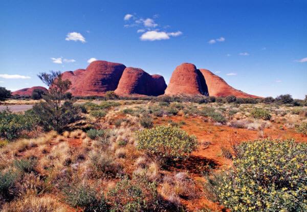 Australia Sports Tours